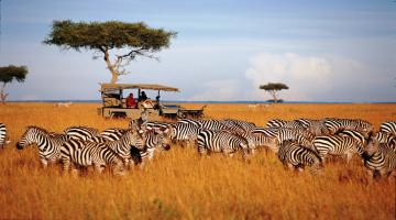 18 Days | Mount Kenya | Sweetwaters | Treetops | Lake Nakuru | Lake naivasha | Masai Mara | Mombasa | Lodge Safari  18 Days | Mount Kenya | Sweetwaters | Treetops | Lake Nakuru | Lake naivasha | Masai Mara | Mombasa | Lodge Safari